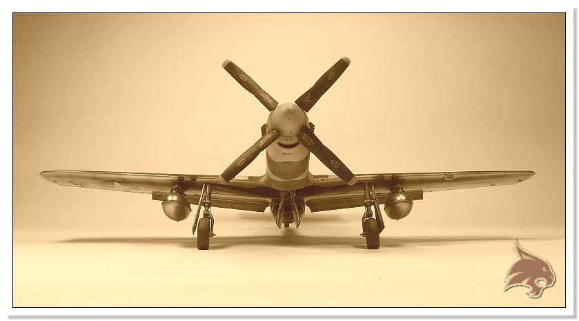 North American P-51 B - ICM 1/48 - Página 2 End.01