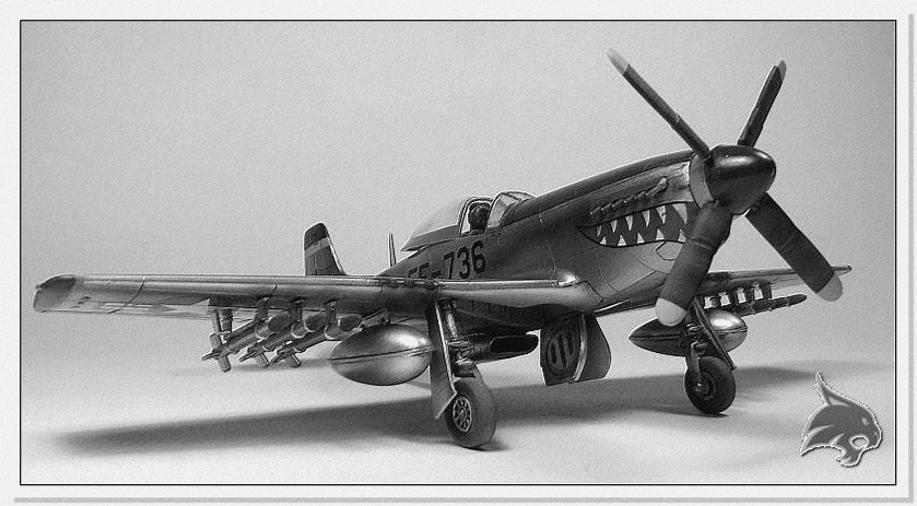 F-51 D Mustang Korean War - Italeri 1/72 End1